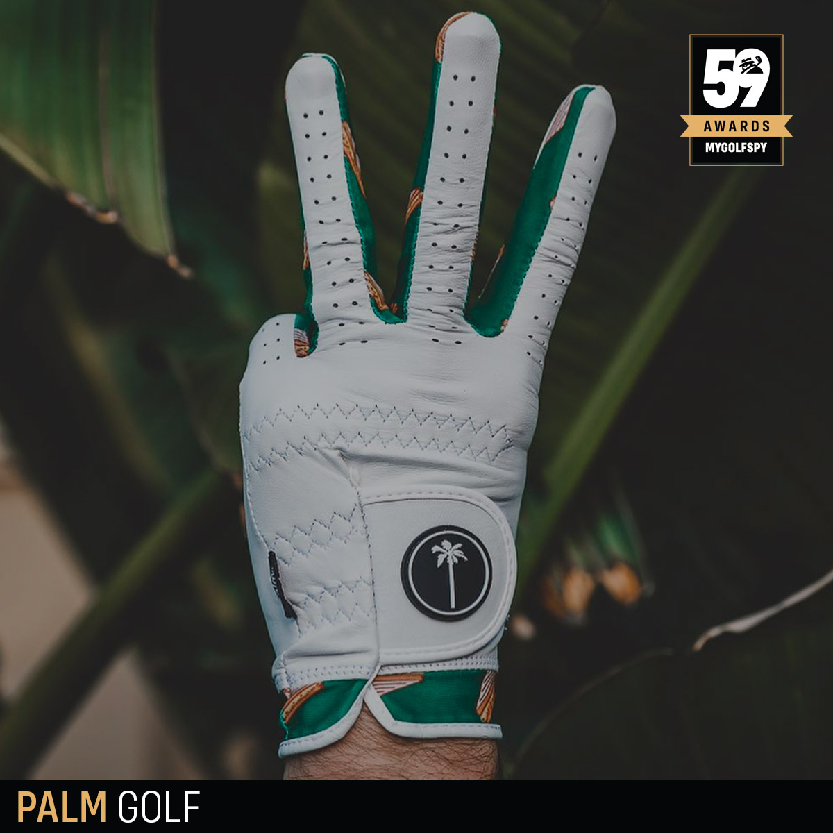 palm golf glove